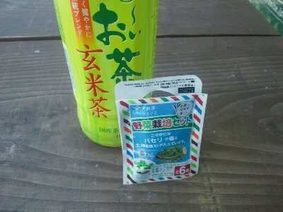 wpid DSC 0396 お~いお茶に野菜栽培セットが…