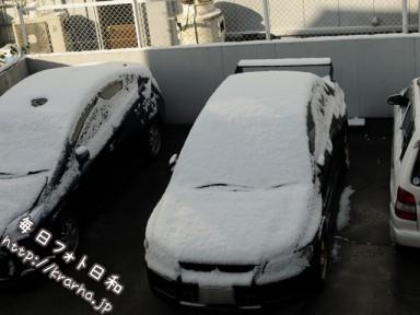 DSC 7277 384x288 雪が積もりましたね。テンションが上がってきた!